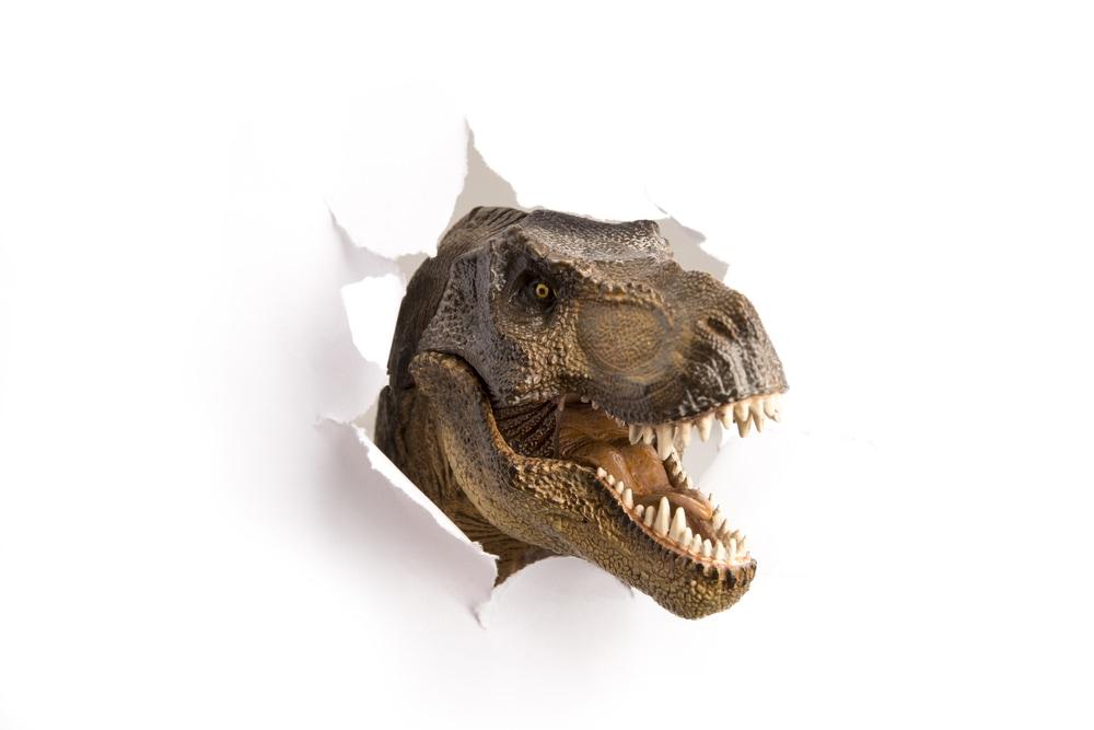Dinotracks First Sunday Tour